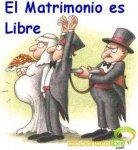 DiccionarioLibre - Matrisuicidio
